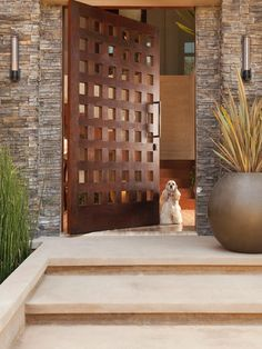 Front Doors Design, Pictures, Remodel, Decor and Ideas - page 11    This is CRAZY. love it.