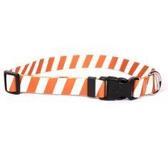 Team Spirit Orange and White Break Away Cat Collar