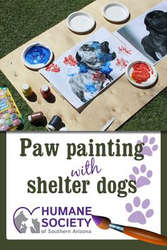 Watch this cute video of a paw print craft for shelter dogs! This video features Jett and Panama, two adoptable dogs at HSSA. Try this diy with your pets!