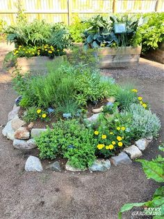 You can grow a lot of herbs in a very small amount of space by using a specially designed planting bed called an herb spiral. Find step-by-step building and planting instructions here, plus some creative ideas for the best materials to make an herb spiral. #herbgardening #gardeningtips Garden Soil, Raised Garden Beds, Herb Garden, Herb Spiral, Spiral Garden, Growing Gardens, Growing Herbs, Types Of Basil, Easy Herbs To Grow