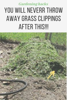 19 Reasons Why You'll never throw away grass clippings after this  garden ideas, gardening ideas, gardening for beginners, gardening design, gardening tools,  gardening hacks, gardening and landscape, gardens and gardening ideas #gardening #gardenhacks #gardeningideas