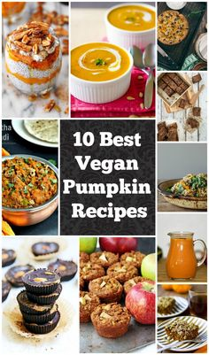 Best Vegan Pumpkin Recipes that are also all gluten free! #halloween #thanksgiving #fall
