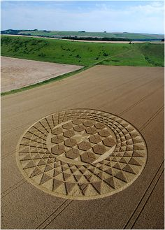 August brings us the most stunning formation of the season to date. A beautiful design incorporating the 3D optical effects of previous seasons located at Sugar Hill in Wiltshire.