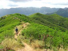 Hiking the Lanikai Pillbox Trail in Hawaii - Got Dirt? Nature Photo Contest