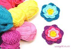 Bloemen haken is zo gepiept en hoe leuk is het als je daarmee anderen kunt helpen? Haak dit leuke bloemetje, stuur \'m op en help eenzame ouderen!