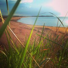 Secret Beach, Twin Shores (@srbluemountain) | Twitter
