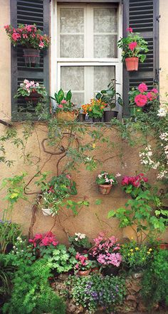 Valbonne Window- Provence, France