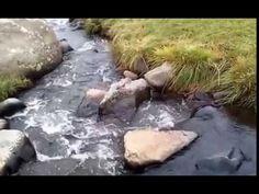 Ardahan Dereleri Akarsuları - Mehmet Ali Arslan Videos 2016