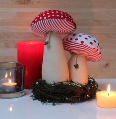 Vicky und Ricky: Mushrooms
