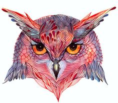 Illustration - illustration - Owl face // SALE 3 for 2 // Owla wild bird face water color art print, . illustration : – Picture : – Description Owl face // SALE 3 for 2 // Owla wild bird face water color art print, (No. via Etsy -Read More – Art And Illustration, Illustrations, Arte Punk, Art Visage, Drawn Art, Owl Art, Wildlife Art, Pics Art, Wild Birds