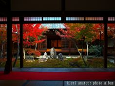 建仁寺 潮音庭の紅葉