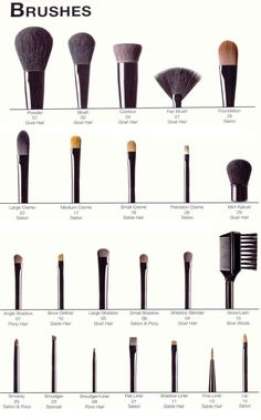 A Complete Picture Guide To Beauty Make Up Brushes | pinterest : @tileeeeyahx3 ☼