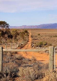 Outback Track, just past Australian Arid Lands Botanic Gardens, http://www.bloggerme.com.au/states/great-australian-bight Australia