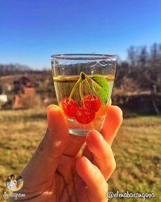 One of the most valuable things that our ancestors have left us, the Serbs, is rakija, our traditional drink made of fruit. | Једна од највреднијих ствари коју су нама, Србима преци оставили у аманет јесте ракија, наше традиционално пиће. | Photo: elenabasangova