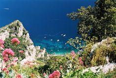 Capri, Italy / photo by Tracey Johns
