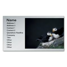Alaska Puffins Feathered Colorful Birds Business Card  printed on a silver colored background.  Other colors available.