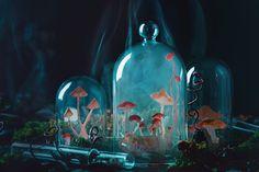Growing mushrooms by Dina Belenko on 500px
