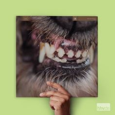 Barnes & Noble® has the best selection of Miscellaneous Experimental Vinyl LPs. Buy Blanck Mass's album titled World Eater [LP] to enjoy in your home or Vinyl Lp, Vinyl Records, John Power, Cool Album Covers, Underground Music, Best Albums, Top Albums, Shopping World, Electronic Music
