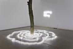 New work from Keith Lemley that just opened at 1708 Gallery in Richmond, VA. Keith Lemley's sculptural installation consists of concentric rings of white neon tubes the paths of which mimic the natural variation found in the logs at their center. Lemley creates a space for dialogue between nature a