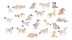 """lornascobie: """"Dalmatians! """""""