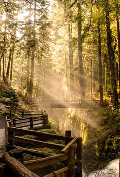 ~ Sol Duc Falls by Aditi Kulkarni ~ Olympic National Park, Washington State Oh The Places You'll Go, Places To Visit, Beautiful World, Beautiful Places, Amazing Places, Simply Beautiful, Photos Voyages, All Nature, To Infinity And Beyond