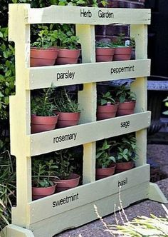 I have always wanted to make an herb garden, but with a small yard, 4 children, and 2 dogs, there is not much room left for an herb garden, or any garden for that matter. That was an issue until I came upon the wonderful pallet garden on the internet