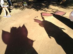 The Westwood Fairies Wing Shadows at the TRF 2013