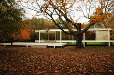 The Farnsworth House, built between 1945 and 1951 for Dr. Edith Farnsworth as a weekend retreat, is a platonic perfection of order gently placed in spontaneous nature in Plano, Illinois. Just right outside of Chicago in a 10-acre secluded wooded site with the Fox River to the south, the glass pavilion takes full advantage of relating to its natural surroundings, achieving Mies' concept of a strong relationship between the house and nature.