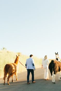 WHERE CAN I RENT A LLAMA. Photography: Brooke Stapleton Photography - www.brookestapleton.com/  Read More: http://www.stylemepretty.com/2014/08/22/boho-chic-backyard-wedding-in-salt-lake-city/