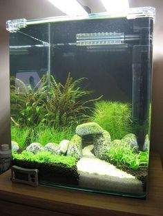 16 Amazing Aquarium Design Ideas Indoor Decorations - Whether or not you're beginning your first aquarium or the subsequent in a protracted line it helps considerably to have an thought of the fish tank design earlier than you really get going. Tropical Fish Aquarium, Tropical Fish Tanks, Aquarium Fish Tank, Fish Tank Terrarium, Aquarium Stand, Aquarium Design, Transférer Des Photos, Cool Fish Tanks, Amazing Fish Tanks