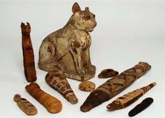 Diverses momies d'animaux de l'Égypte ancienne (crédit : université de Manchester)