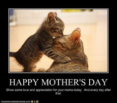 Mother's love day