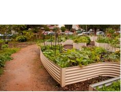 Do you want a garden? Maybe community garden can help?