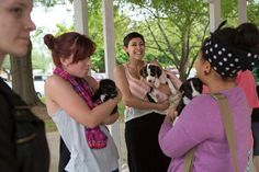 Gainesville Students Find Finals Stress Relief With Puppy Therapy
