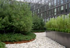 Kelco Landscaping - Rooftops/Greentops Gallery
