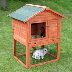 Outback Special Hutch with Run - Hutch & Run: 96 x 79 x 120 cm (L x W x H) from zooplus Exclusive :: Buy from ZooPlus on The UK High Street Rabbit Hutch For Sale, Rabbit Hutch And Run, Large Rabbit Hutch, Rabbit Hutches, Playhouses For Sale, Indoor Rabbit, Large Rabbits, Rabbit Cages, Baby Animals Super Cute