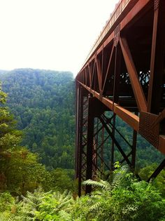 The New River Gorge Bridge. This photo was taken just as you walk underneath the bridge for the catwalk tour with Bridge Walk