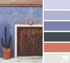 Color Wander | Design Seeds