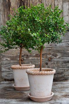 Underbara krukor i såå snygg design.   Jag skulle vilja ha dem alla!        Krukorna kommer från Bergs Potter Köpenhamn och tillverkas ...