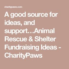 A good source for ideas, and support…Animal Rescue & Shelter Fundraising Ideas - CharityPaws