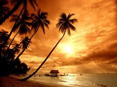 10 Best Places to Live for Escaping World Conflict (Switzerland, Costa Rica, Papua New Guinea, Canada, Seychelles, Finland, Tuvalu, Iceland, Bhutan, New Zealand) David Sanborn, Wedding Pictures, Beautiful Pictures, Cool Pictures, Beautiful Places, Best Nature Wallpapers, Cool Wallpaper, Orange Beach, Sunset Wedding