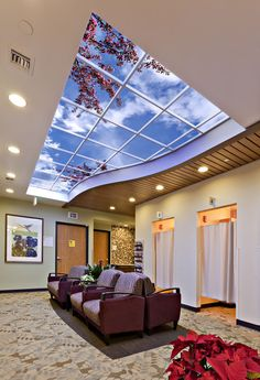 Pin This picture is an example of a redesigned waiting room, which used a sky ceiling to bring natural lighting and the outdoors to patients. Sky Ceiling, Ceiling Light Design, Ladybug House, Interior Exterior, Interior Design, Assisted Living Facility, Faux Window, Hospital Design, Healthcare Design