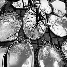 Mirrors and trees