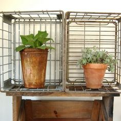 Items similar to Antique Industrial Metal Milk Crate Boxe Salvage Dellwood 69 Dairy Farm on Etsy Milk Crate Shelves, Metal Milk Crates, Wooden Crate Shelves, Crate Bookcase, Pallet Crates, Old Crates, Pallets, Wooden Crates Nightstand, Wooden Crates Gifts