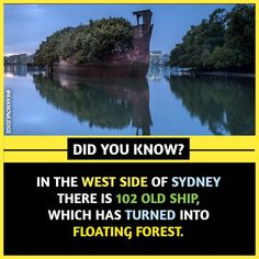 Amazing And Unbelievable Random Facts That Will Blow Your Mind