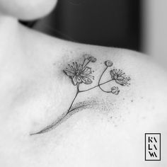 Linden tattoo flower. Tatouage fleur de tilleul. By KALAWA Tattooer - Tattoo dotwork artist from Aix-en-provence (FRANCE)
