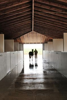 Solana-Stables-6
