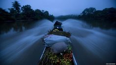 View of the water as boat travels on the Cayapas River in north-western Ecuador.