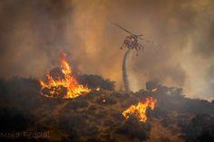 La Tuna Canyon fire - LAFD Erickson Aircrane helitanker