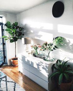 2,291 отметок «Нравится», 20 комментариев — Viktoria Dahlberg (@viktoria.dahlberg) в Instagram: «Home  #home #interior #deco #plants #uohome #nyc»
